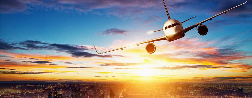 International Travelers to LAX